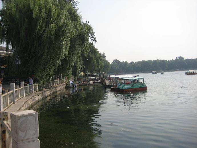 the weeping willows of houhai lake