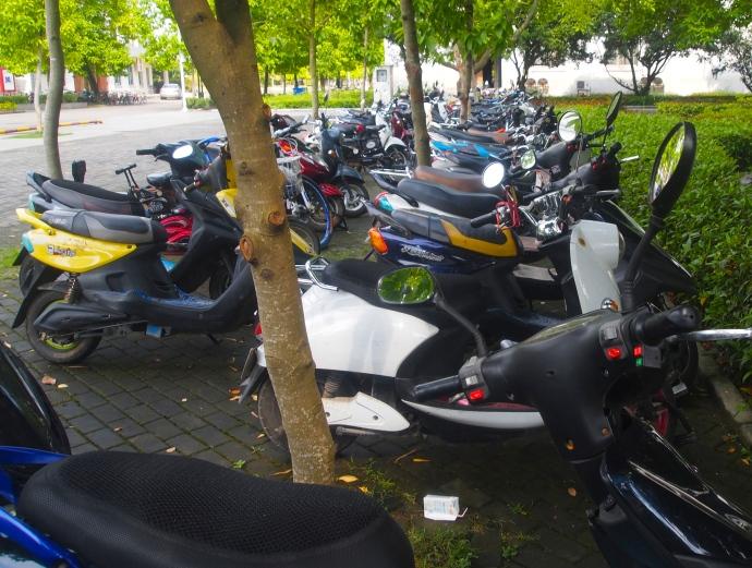 motorbikes ~ the preferred mode of transportation