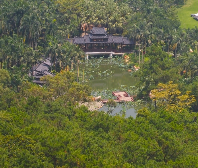 view of Lotus Pond next door to Sky Pond