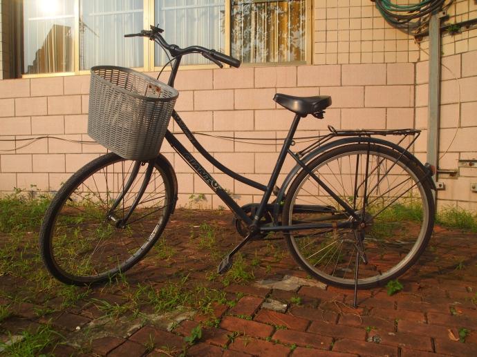 Nancy's bike (mine until I leave!)