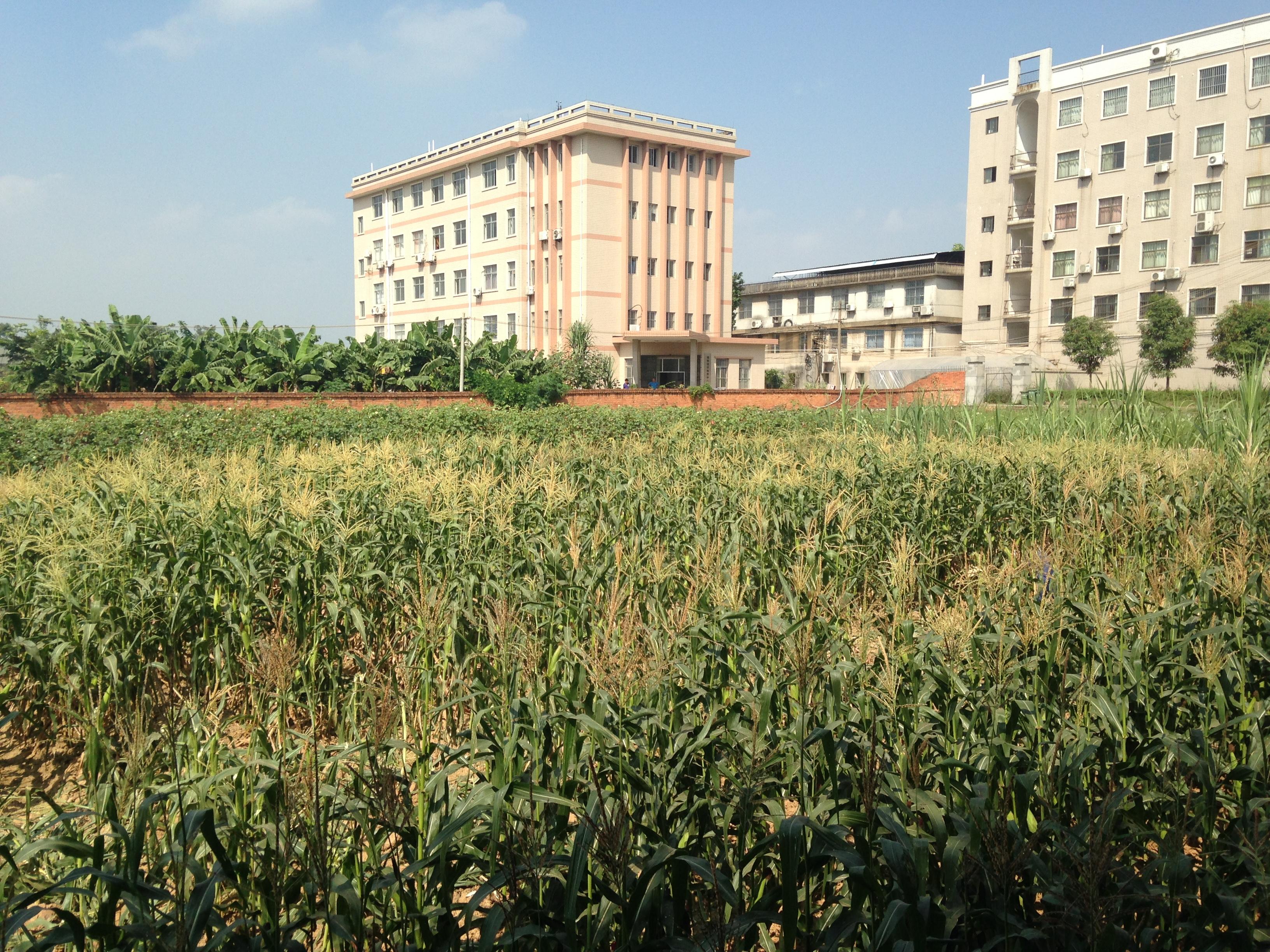 Resultado de imagen para agricultural isolation