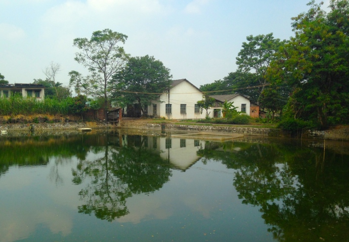 isolated house along the pond