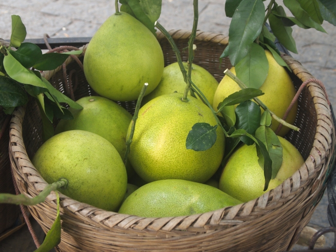 Pomelos for sale