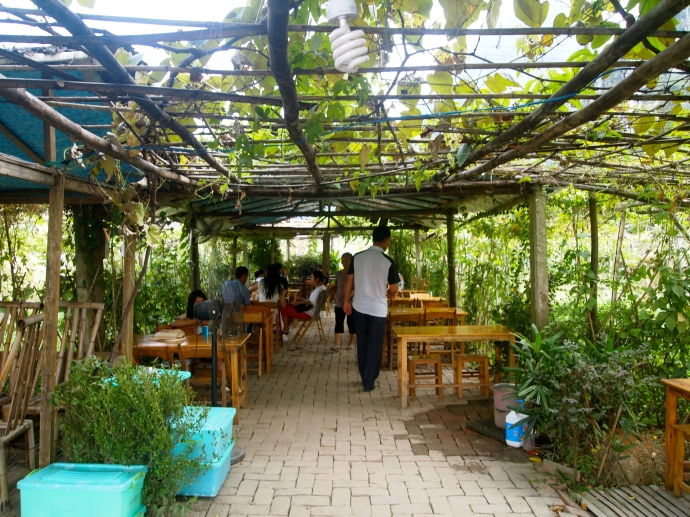the arbor under which we eat lunch at Passion Fruit Leisure Farm