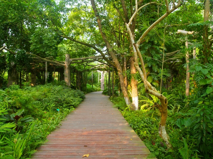 the pathway out