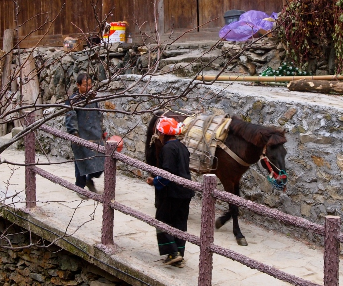 the industrious Zhuang people