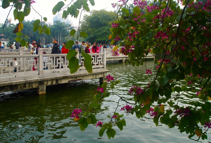 Walkways on Bailong Lake