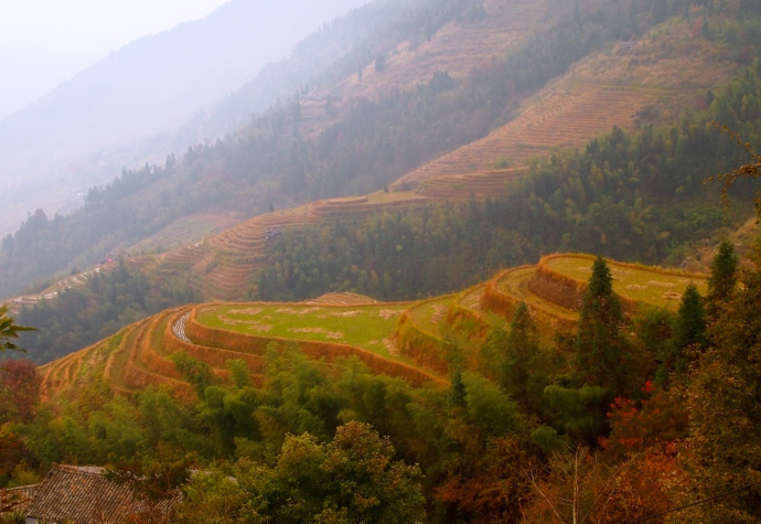 beginning on the trail to Longji Ancient Village