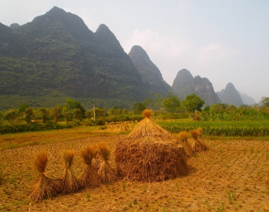 Bicycling through Yangshuo