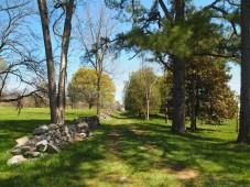 Virginia Arboretum