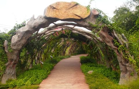 Trellis at Guangxi Medicinal Plant Garden