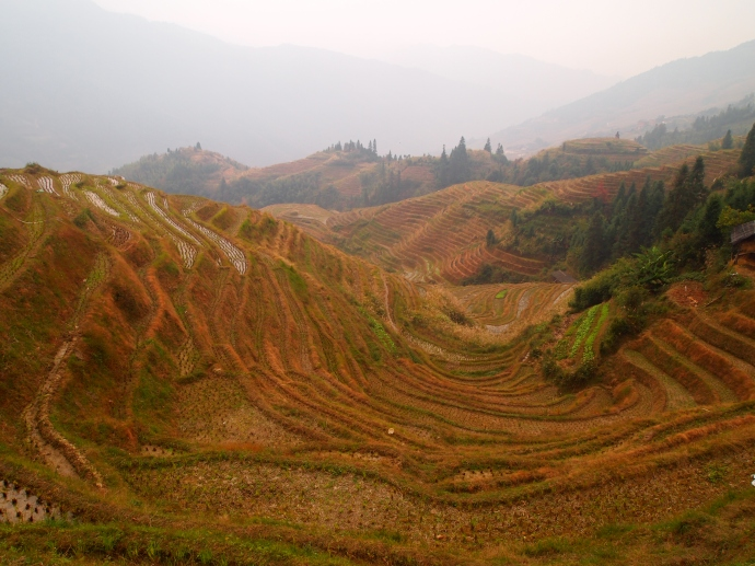 rice terraces on the way from Ping'An to Longji