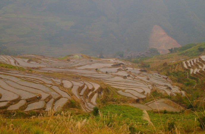 the main viewpoint of terraces in Longji