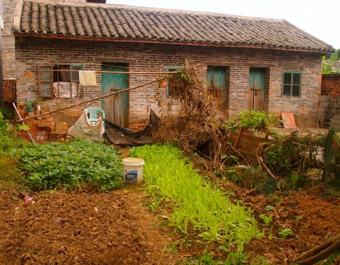 Villager's garden