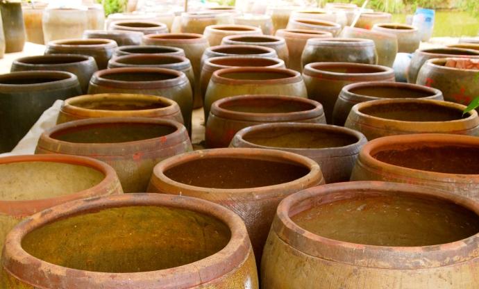 jars for fermenting?