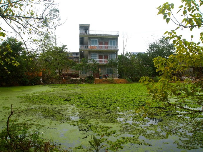 village homes and pond