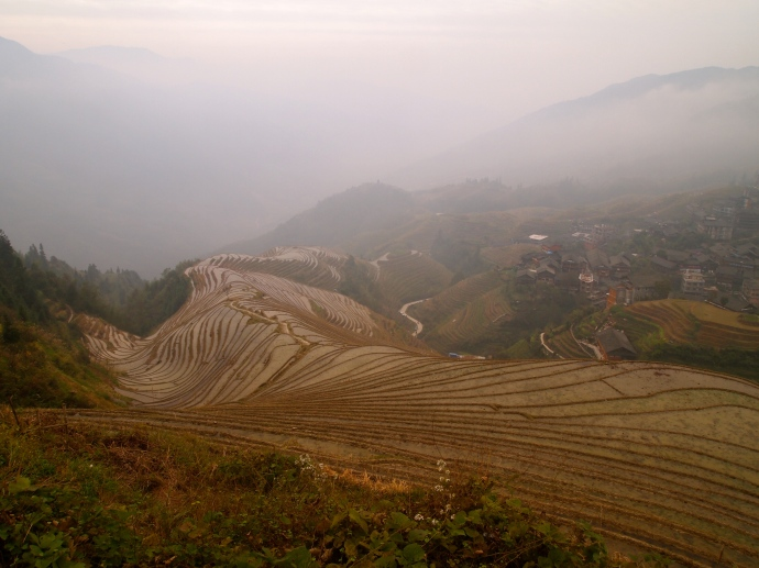 Nine Dragons & Fiver Tigers rice terraces in Ping'An