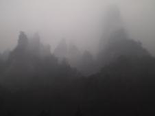 foggy views
