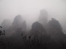 blurry pinnacles