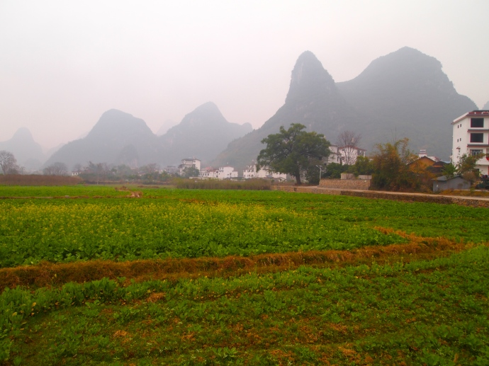 landscape around Yangshuo