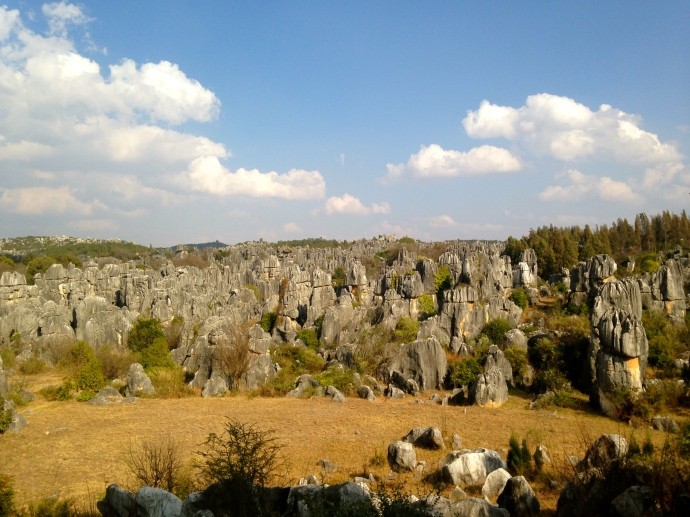 The Stone Forest from the perimeter road
