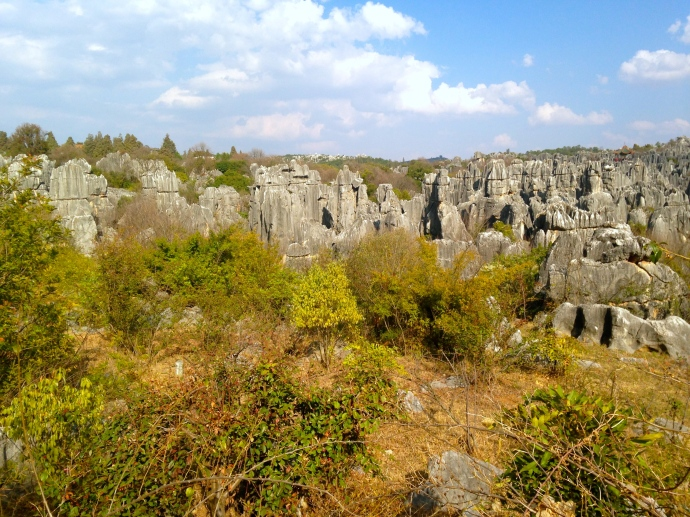 more stone forest