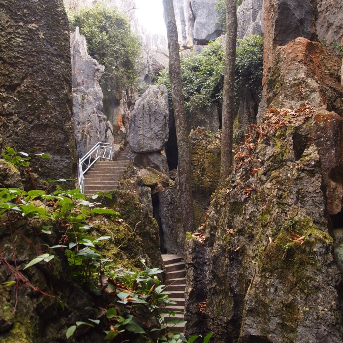 Steps in Major Stone Forest