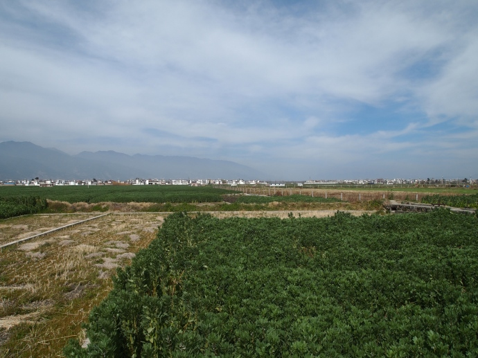 The countryside between Dali and Erhai Lake