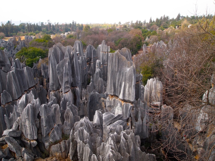 Limestone pinnacles