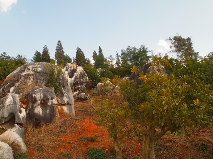 Wannianlingzhi Scenic Area