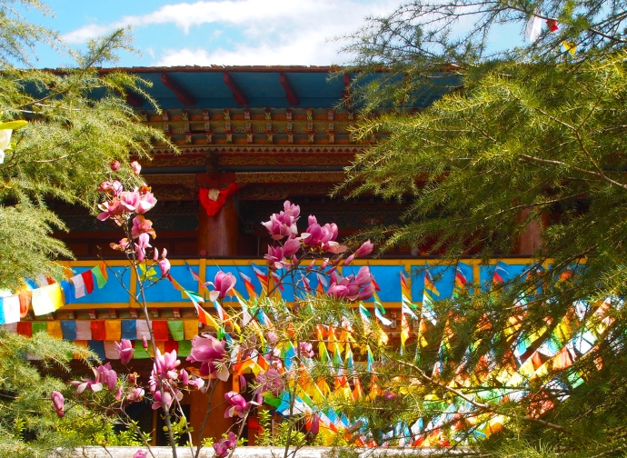 Buddhist prayer flags at the Tibetan Buddhist Lamasery