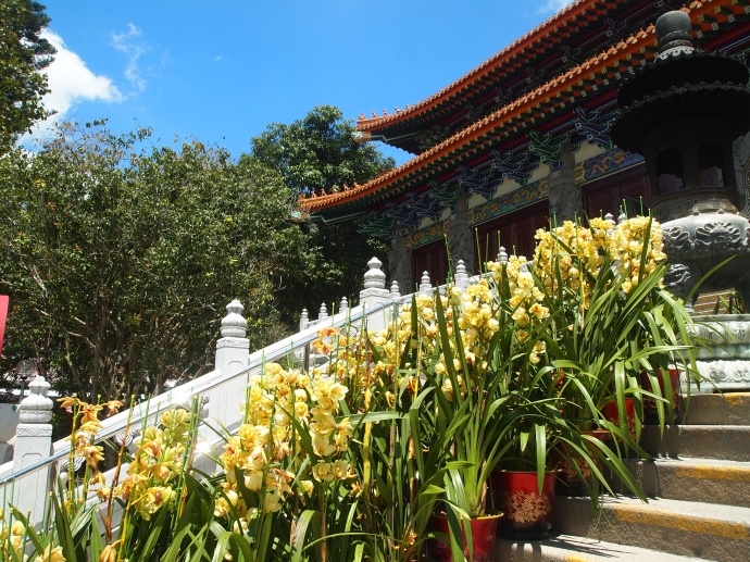 Steps to the Main Temple at Po Lin Monastery