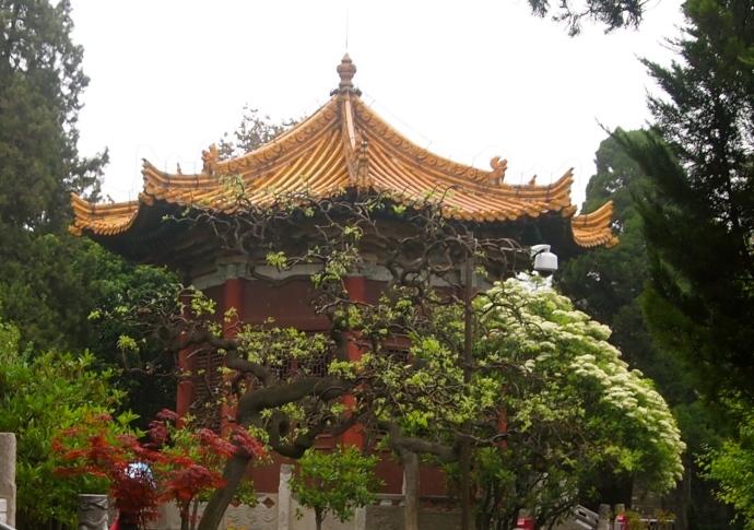 Pavilion and foliage