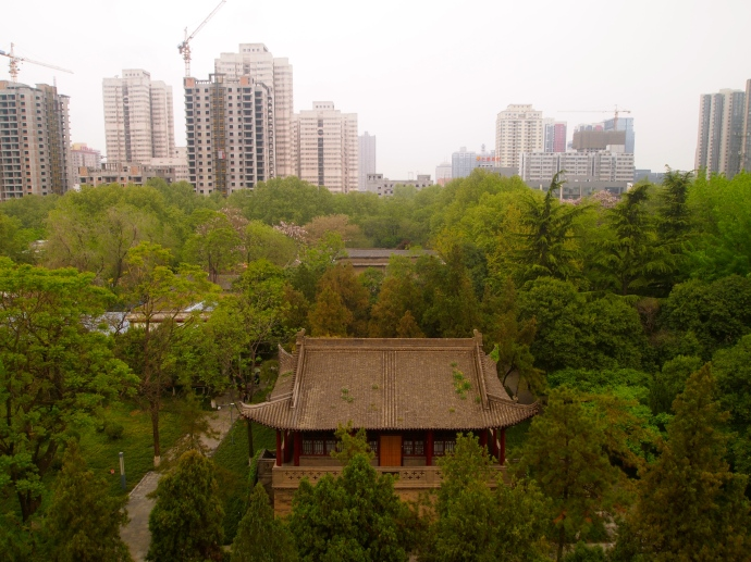 View from Small Wild Goose Pagoda