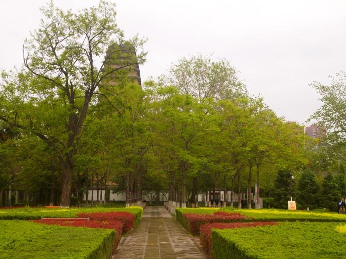 Gardens & Small Wild Goose Pagoda
