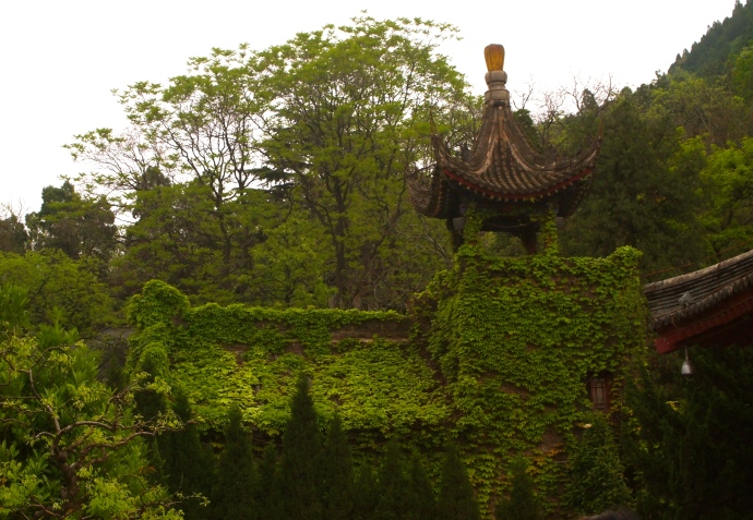 Ivy-covered buildings at Huaqing Hot Springs