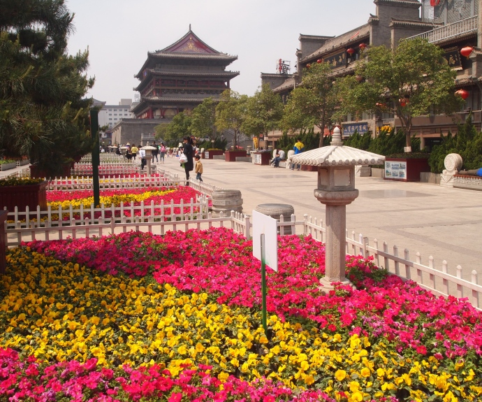 gardens and Drum Tower