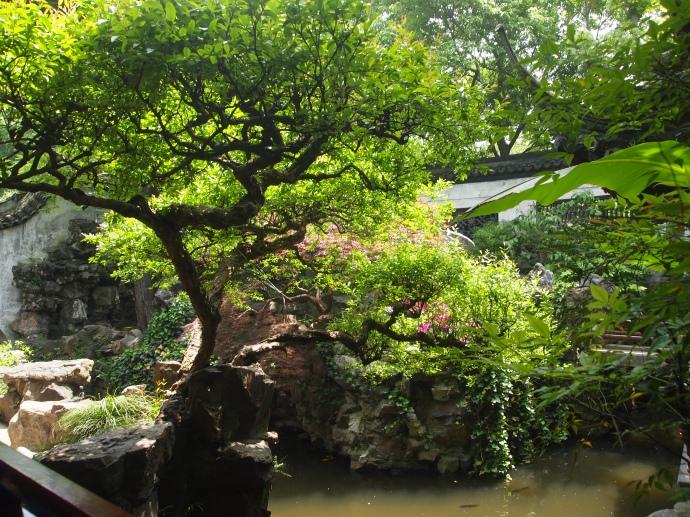 Gardens & ponds