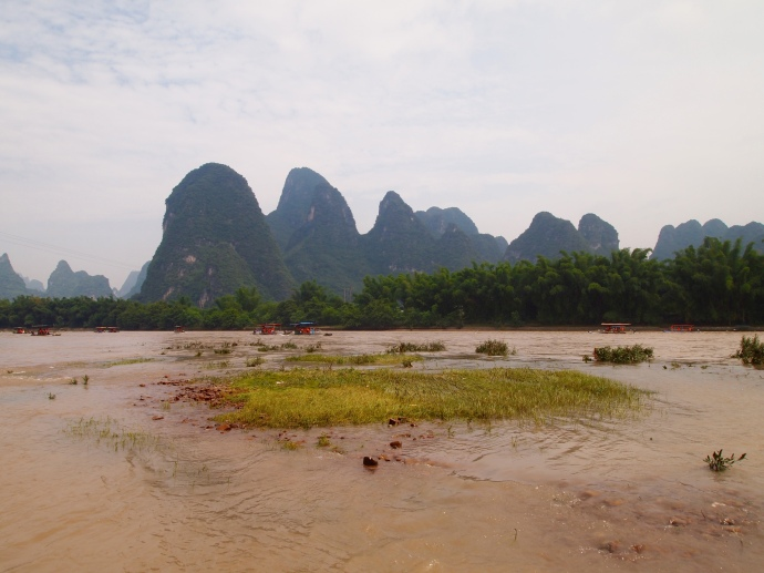 grassy patches in the Li River