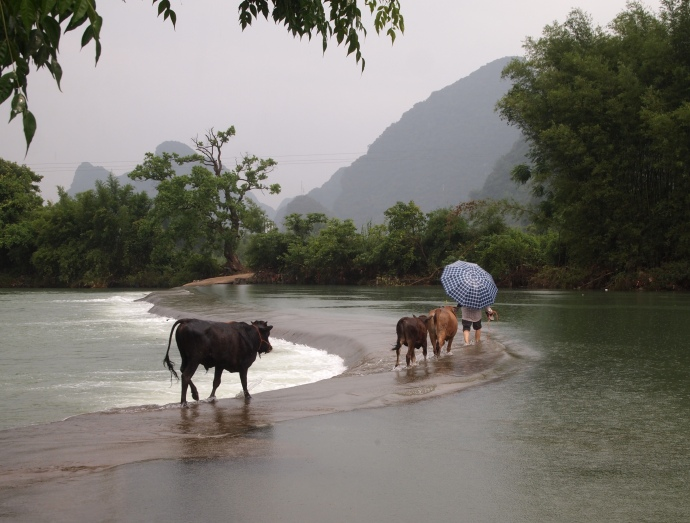 wading across the Yulong River