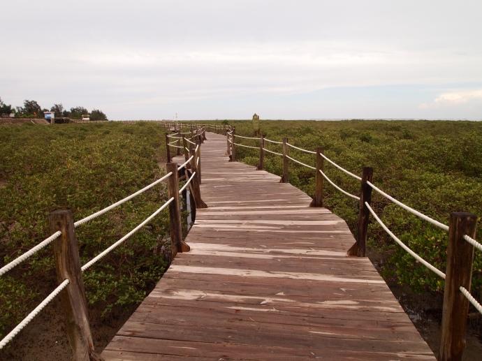 following the walkway