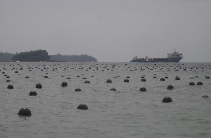 the Beihai pearl farm