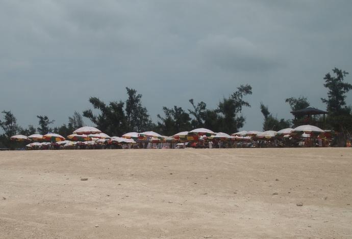 umbrellas for sunny days