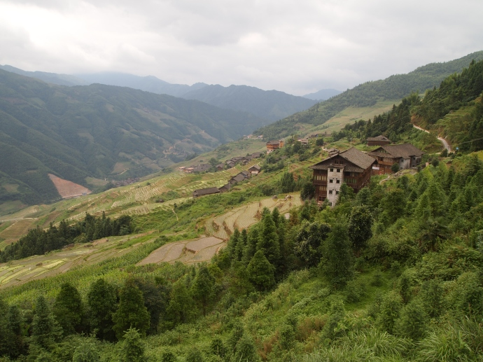 coming out of the woods and approaching the village of Longji