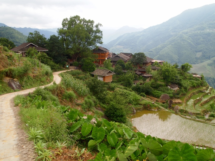 heading toward Longji Ancient Zhuang Village