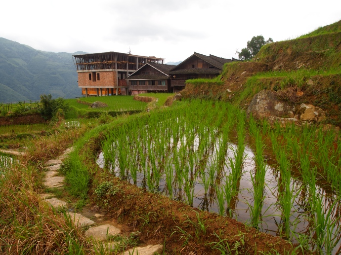 Longji Rice Terraces with Longji Ancient Zhuang Village below